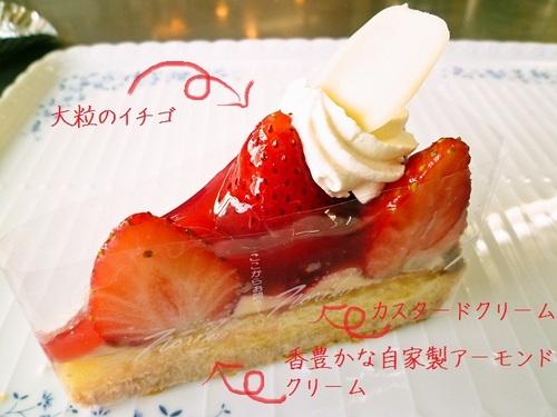 foodpic1181525.jpg